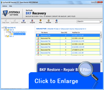 Screenshot of BKF Repair Tool